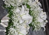 Gricigliano20130319_104938